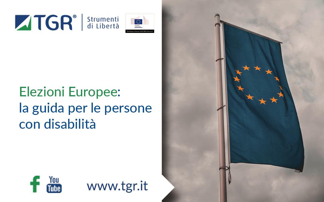 Elezioni Europee: la guida per le persone con disabilità